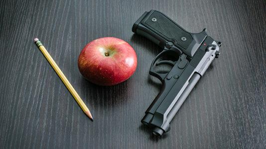 Teacher accidentally fires gun at school