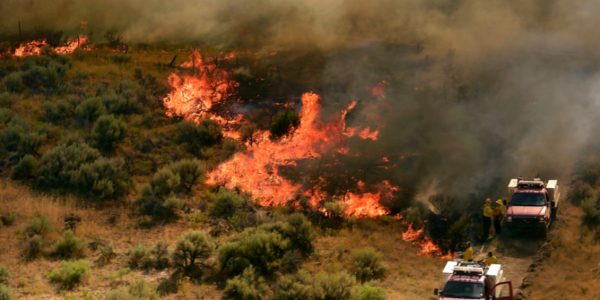3 homes destroyed, more threatened by Utah wildfires