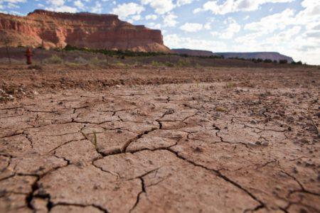 Experts: Summer rains put dent in southwest US fire danger