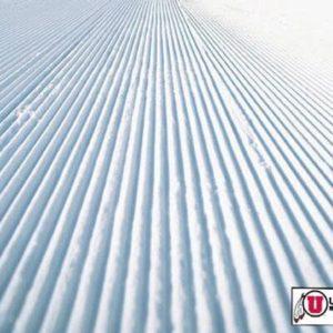 Fredrik Landstedt Hired As University of Utah Director of Skiing