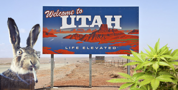Mitt Romney, Mia Love and marijuana headline Utah election