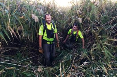 Rescuers use heavy-duty vehicle to plow down invasive weeds