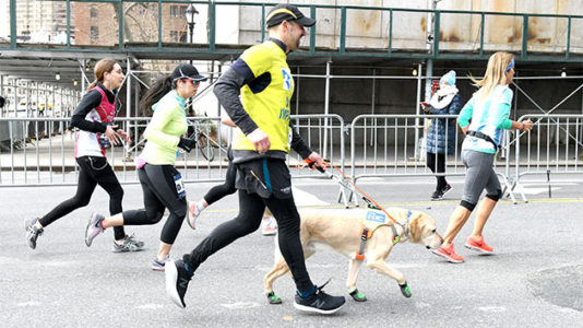 Blind man finishes New York City half marathon with the help of guide dogs